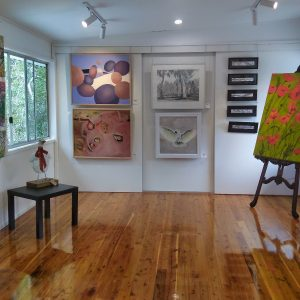 Art Display at the Coochiemudlo Artisan Collective Gallery