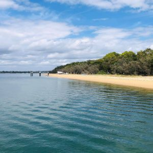Foreshore Coochie by Gary Sheehy